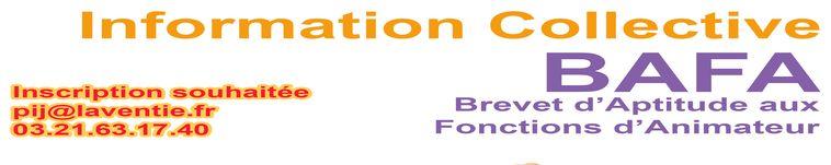 Information Collective BAFA