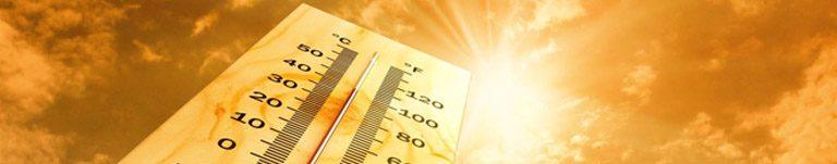 Canicule et fortes chaleurs : règles de vigilance